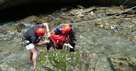 Hund überlebt 30-Meter-Sturz (Bild: Bergrettung)