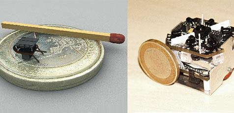 Forscher lassen Mini-Roboter von Ameisen lernen (Bild: Uni Graz)