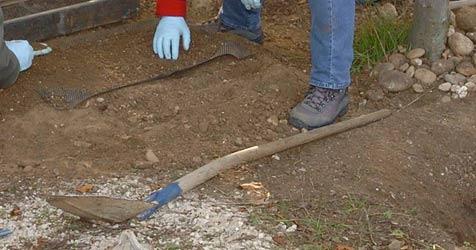 Menschliche Knochen von Bauarbeitern entdeckt (Bild: APA/JOHANNES MARKOVSKY)