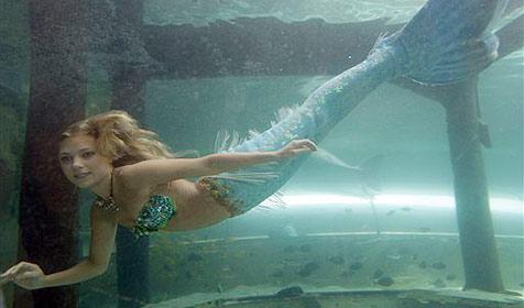 Angeblich Meerjungfrau vor Israel gesichtet (Bild: AP)
