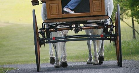 Vater bei Ausfahrt mit Kutsche in Altenfelden getötet (Bild: Peter Tomschi)