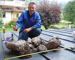 Mit Kälteschock gegen riesiges Wespennest (Bild: privat)
