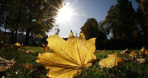 Wärmster Tag im Herbst vorbei - nun wird es richtig kühl (Bild: APA/HELMUT FOHRINGER)