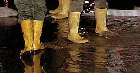 Dauerregen verursacht Schäden in etlichen Kellern (Bild: APA/Gerald Lechner)