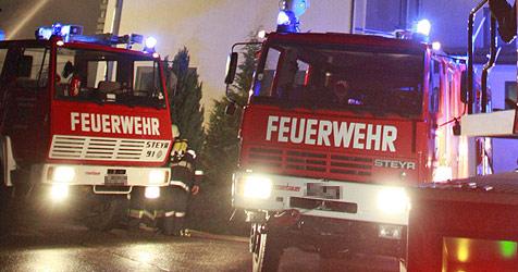 Stallgebäude in Katzelsdorf völlig niedergebrannt (Bild: APA/GERT EGGENBERGER)