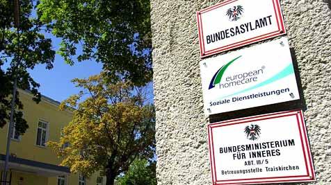 Schussattentäter will in Traiskirchen Asyl – verhaftet! (Bild: APA/Barbara Gindl)
