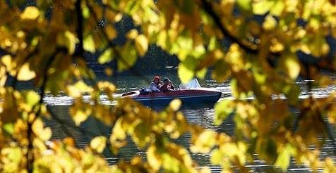 Nach Winter im Herbst kommt jetzt der Frühling (Bild: dpa/A2585 Frank Leonhardt)