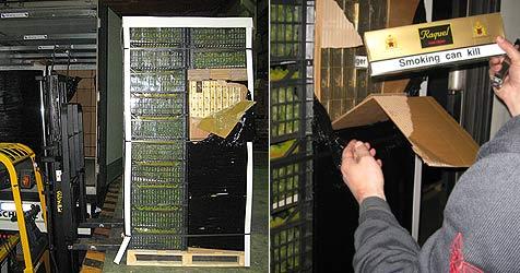 36.400 Stangen Zigaretten in Lkw sichergestellt (Bild: APA/ZOLLAMT LINZ WELS)