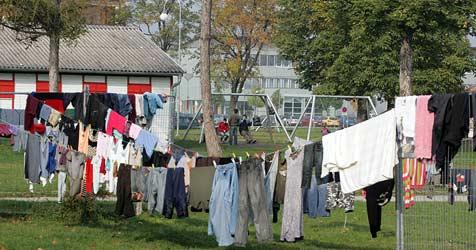 LH Pröll fordert von Fekter drittes Flüchtlingslager ein (Bild: Andi Schiel)