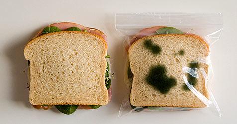 Ekel-Jausensackerl halten Sandwich-Diebe fern