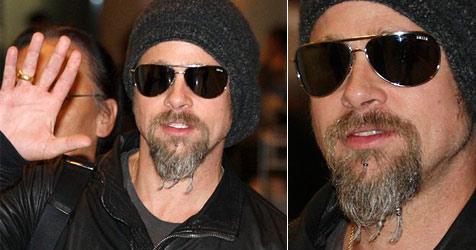 Brad Pitt trägt nun Zöpfchen im neuen Bärtchen