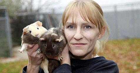 Meerschweinchen und Hamster im Park ausgesetzt (Bild: Markus Tschepp)