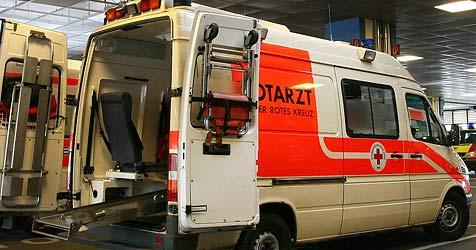 57-Jähriger in Bruck bei Baggerunfall schwer verletzt (Bild: APA/HELMUT FOHRINGER)