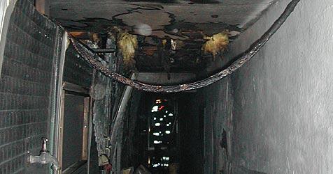 Feuerwehr rettet 200 Borstentiere bei Stallbrand (Bild: FF Taufkirchen)