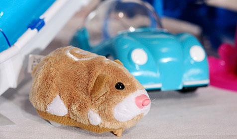 Hamster-Roboter treiben US-Eltern in den Wahnsinn