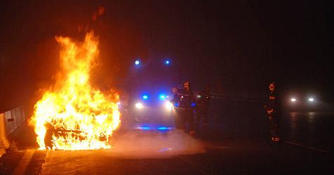 Auto auf A2 bei Wr. Neudorf in Flammen aufgegangen (Bild: Herbert Wimmer/BFK Mödling)