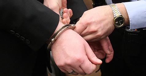Dämmerungs-Bande nach Verfolgung gestellt (Bild: APA/GEORG HOCHMUTH)