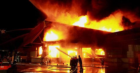 Großbrand in Viskosespinnerei von Linz Textil (Bild: APA/Rubra)