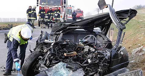 Mutter und Sohn bei Crash im Bezirk St. Pölten getötet (Bild: APA/PAUL PLUTSCH)