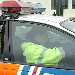 Neuseeland: Polizei sucht einarmigen Banditen (Bild: AP)