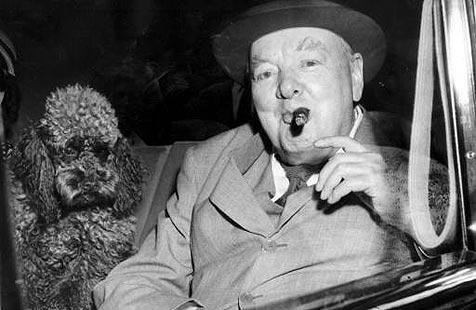Stummel von Churchills Zigarre bringt 5.200 € ein