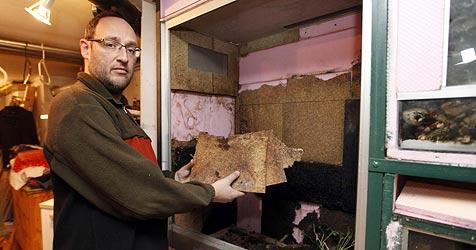 Einbrecher legt im Drogenrausch Feuer - Keller verwüstet (Bild: Markus Tschepp)