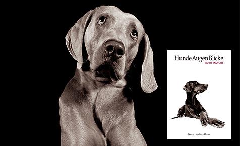 Der Hund als Wesen von unwirklicher Schönheit (Bild: (c) Collection Rolf Heyne)