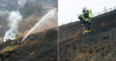 Grünschnitt verbrannt - Frau löst Großbrand aus (Bild: FF Krems)