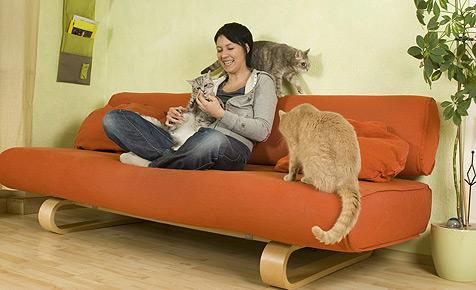 Eine, zwei oder drei - wie viele Katzen dürfen es sein? (Bild: Fressnapf/Ulrike Schanz)