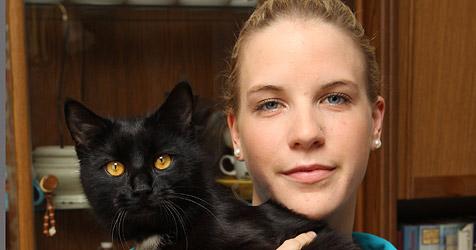 Tierhasser in Sankt Johann unterwegs - schon 16 Katzen tot (Bild: Andreas Kreuzhuber)