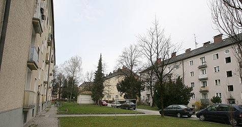 """""""Masterplan"""" sieht Abriss vor - nur ein Haus bleibt stehen (Bild: Andreas Tröster)"""