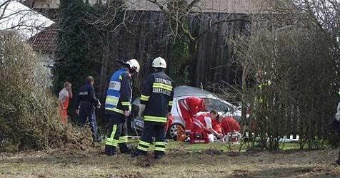 20-Jähriger rast mit Auto durch Garten und gegen Baum (Bild: FF Eberstalzell)