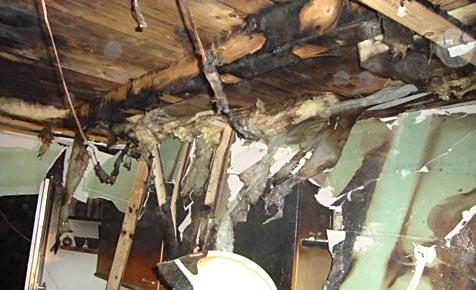 Speiseöl auf Herd vergessen - Küche brennt völlig aus (Bild: Feuerwehr Langenzersdorf)