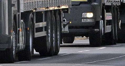 175 Brummi-Lenker kamen in Obertrum zum Trucker-Treffen (Bild: APA/BARBARA GINDL)
