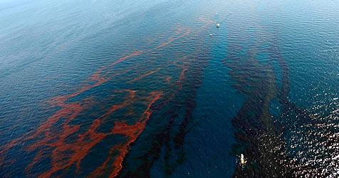 Ölpest: Firma aus Breitenfurt bietet Know-how an