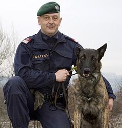 """Polizeihund """"Gringo"""" rettet 75-jährigen Vermissten (Bild: Polizei)"""