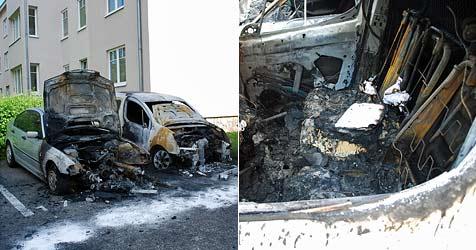 Zwei geparkte Autos in Ternitz völlig ausgebrannt (Bild: www.einsatzdoku.at)