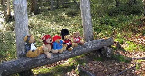 Reiseveranstalter bietet Urlaub für Teddybären (Bild: Teddy Tours Lapland)
