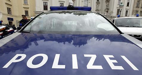 Diebe verstecken gestohlenes Handy in Polizeiauto (Bild: Reinhard Holl)