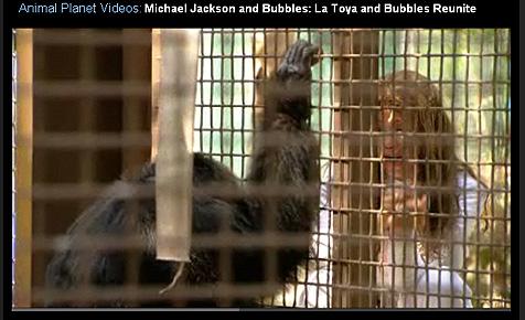 La Toya Jackson weint vor dem Käfig von Michaels Affen (Bild: Screenshot Animal Planet)