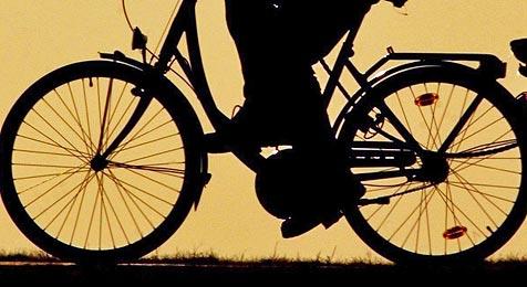 Streife stoppt Alko-Radfahrer auf der Mühlkreisautobahn (Bild: dpa/dpaweb/dpa/Patrick Pleul)