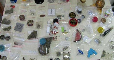 52 Anzeigen wegen Drogen bei Paradise-Festival (Bild: Sicherheitsdirektion NÖ)