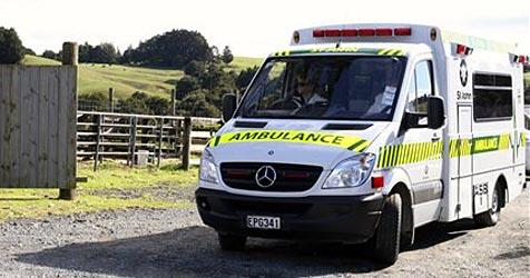 Hund schießt Mann in Neuseeland in den Hintern