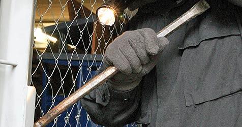 Junger Einbrecher beißt mutigem Zeugen in Hand (Bild: Klemens Groh)