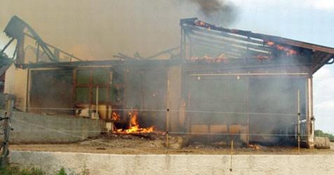 Stall im Bezirk Krems in Flammen aufgegangen (Bild: FF Gföhl)