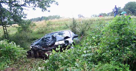 Pkw stürzt 160 Meter ab - Frau sprang aus Wagen (Bild: FF Laussa)