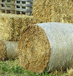 Landwirt im Pongau von Strohballen eingeklemmt (Bild: JOACHIM MAISLINGER)