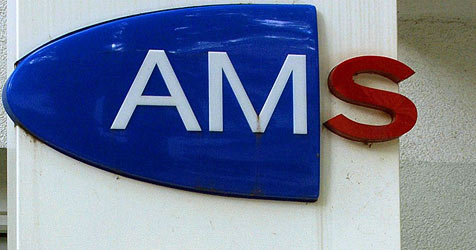 80 Planstellen beim AMS zum Kürzen der Notstandshilfe (Bild: APA/BARBARA GINDL)