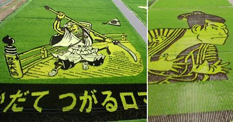 Dorf in Japan lockt mit Riesenbildern in Reisfeldern (Bild: AFP)
