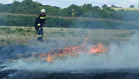 Modellflugzeug löst durch Absturz einen Flurbrand aus (Bild: Feuerwehr St. Pölten - St. Georgen)